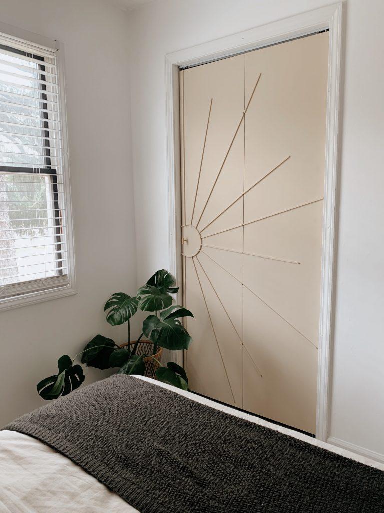 plant on the floor next to a closet door